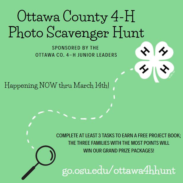 photo scavenger hunt promo